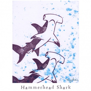 """H like Hammerhead Shark"""