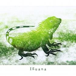 """""""I like Iguana"""""""