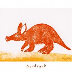 """""""A like Ardvark"""""""