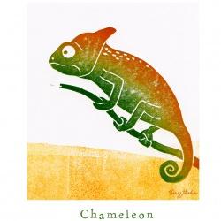 """""""C like Chameleon"""""""