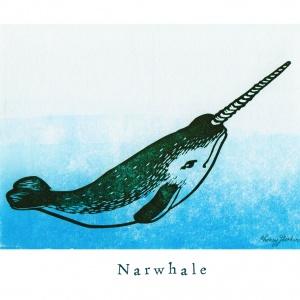"""""""N like Narwhale"""""""