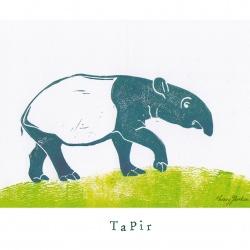 """""""T like Tapir"""""""
