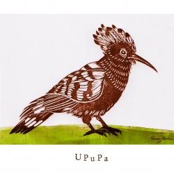 """""""U like Upupa"""""""
