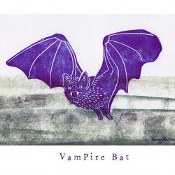 """V like Vampire Bat"""