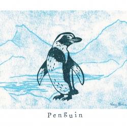 """""""P like Penguin"""""""