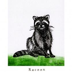 """""""R like Racoon"""""""