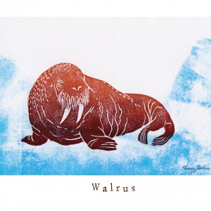 """""""W like Walrus"""""""