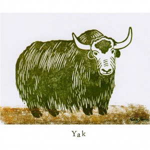 """""""Y like Yak"""""""